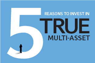 Multi-asset infographic