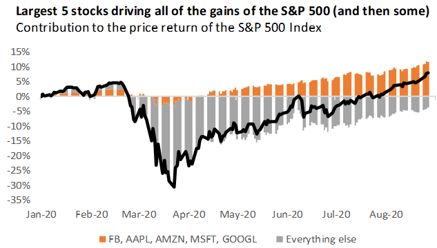 Highly concentrated SP 500 Index